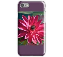 Nymphaea Attraction iPhone Case/Skin