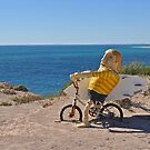Get on your bike - lets go surfing by Ian Berry