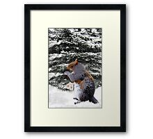 (✿◠‿◠) (◡‿◡✿)  Brrr ITS COLD DO U HAVE SOME MITTENS?? (A SQUIRREL AND HIS MITTENS)(✿◠‿◠) (◡‿◡✿) Framed Print