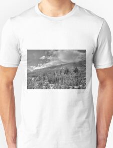 Castle among the Clouds in grey (2) T-Shirt