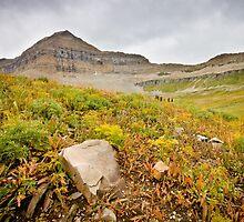 Timpanogos Peak and The Saddle by Spencer Dickson