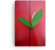 Lily of the Valley on Red Metal Print