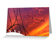 Arizona Sunset. Papers, please! Greeting Card