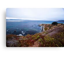 Wild Seacoast - Nature Photography  Canvas Print