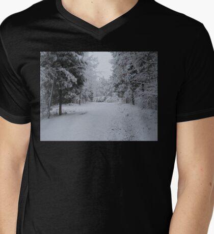 Icy Wonderland Mens V-Neck T-Shirt