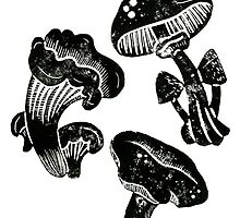 Mushroom Collection Lino Prints by Hazel Partridge