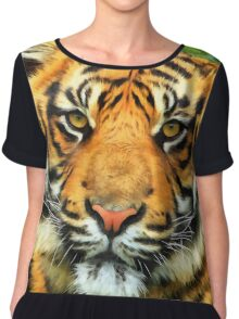 Portrait of a tiger Chiffon Top
