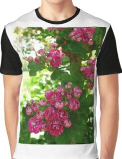 pink blossom flowers Graphic T-Shirt