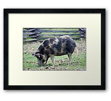 ... and Bacon Framed Print