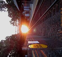 Sun Rise on the Tracks by RPBURCH