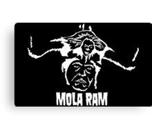 Mola Ram Canvas Print