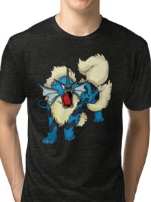 Gyarados/Arcanine Tri-blend T-Shirt