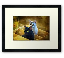 Boxed Set Framed Print