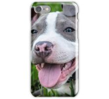 Pit Bull Puppy Smiling iPhone Case/Skin