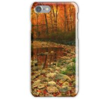 Autumn Lab iPhone Case/Skin
