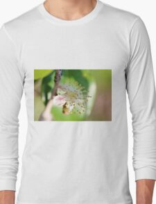 Single Blossom Long Sleeve T-Shirt