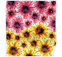 Daisy Blossoms Poster