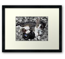"(CAT) ""SAY CHEESE"" (MOUSE)""DID SOMEONE SAY CHEESE?"" CAT & MOUSE PHOTOGRAPHER - PICTURE & CARD Framed Print"