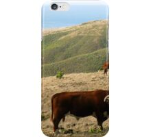 #562     Out To Pasture iPhone Case/Skin