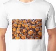 Pumpkins 1 Unisex T-Shirt