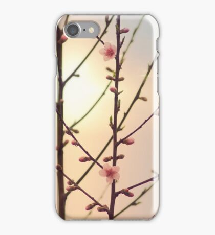 The first day of spring iPhone Case/Skin
