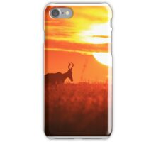 Red Hartebeest - Free and Golden - African Wildlife iPhone Case/Skin