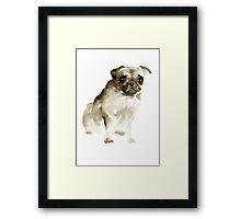 Pug Dog Animal Poster Watercolor Painting Brown Drawing Framed Print