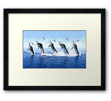 5 Jump Marlin Merge 6 x 10 Dimension Framed Print