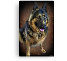 GERMAN SHEPARD PICTURE/CARD Canvas Print