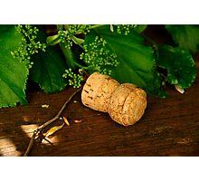 Champagne cork Photographic Print