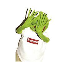 Kermit Photobomb Photographic Print