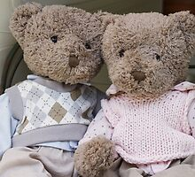 teddy bears by spetenfia