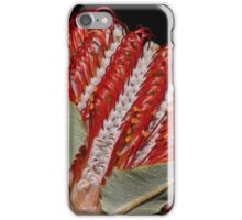 Banksia coccinea iPhone Case/Skin