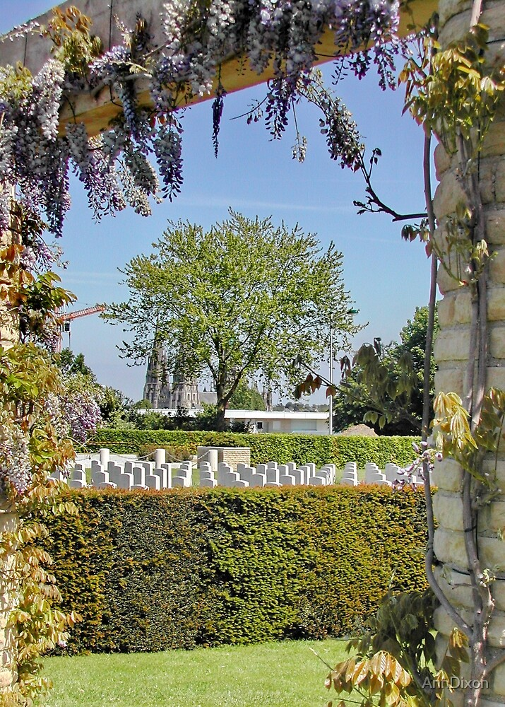 Bayeux Commonwealth War Graves Commission Cemetery by AnnDixon