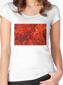 Brilliant Red Autumn Under the Maple Tree Women's Fitted Scoop T-Shirt