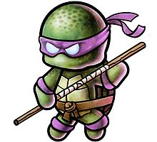 """TMNT -""""Donnie"""" POOTERBELLY by Pat McNeely"""