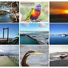 Northern NSW by janewiebenga