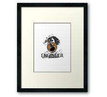 Engineer - Guild Wars 2 Framed Print
