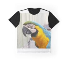 Blue & Gold Macaw Graphic T-Shirt
