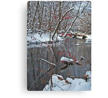 Mill River Berries Canvas Print