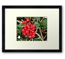 Here's Holly Where's Ivy Framed Print