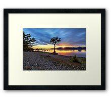 The Lone Tree at Sunset: Milarrochy Bay, Loch Lomond Framed Print