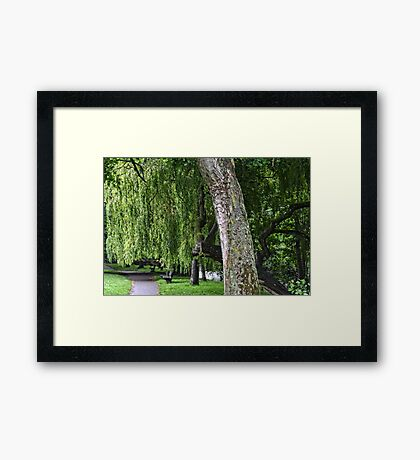 In A Shady Nook By A Babbling Brook Framed Print