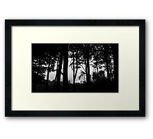 It's in the trees, it's coming.. . Framed Print
