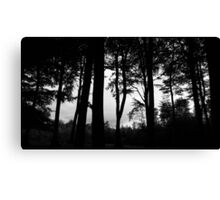 It's in the trees, it's coming.. . Canvas Print