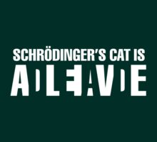 Schrodingers cat is alive or dead  by datthomas