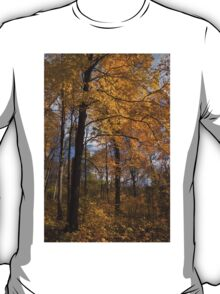Golden Leaves and Dark Branches - Autumn in the Forest T-Shirt