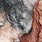 Red Rocks... by Angelika  Vogel