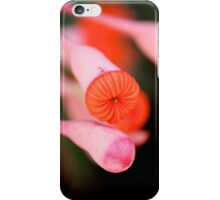 Eucalyptus Buds iPhone Case/Skin