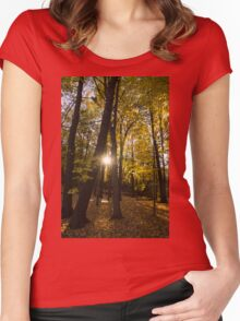 Sun Spotting Autumn - a Peaceful Forest in the Fall Women's Fitted Scoop T-Shirt
